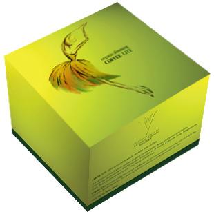 VMN Organic Green Coffee Lite
